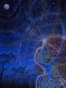 Wonder by Alex Grey, a piece I resonate with.